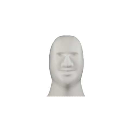 3D Shooting Dummy Head Only